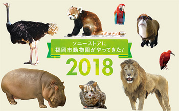 180730_zoo_585_365.jpg