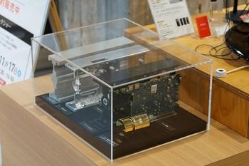 DSC00387 - コピー.JPG